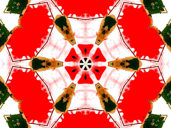 Digital Art - Kaleidoscope Abstract 11a by Artist Dot