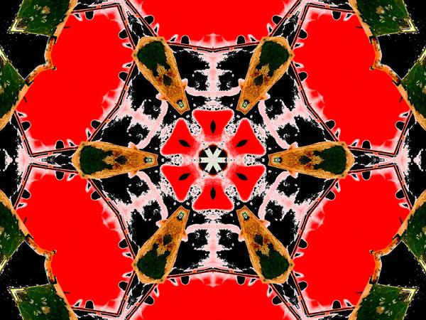 Digital Art - Kaleidoscope Abstract 11b by Artist Dot