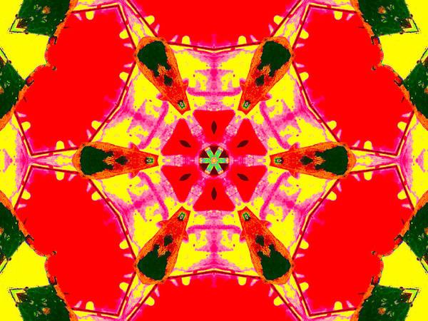 Digital Art - Kaleidoscope Abstract 11c by Artist Dot