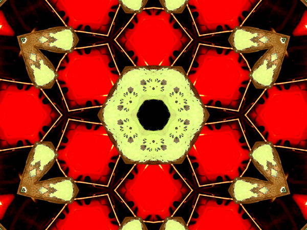 Digital Art - Kaleidoscope Abstract 12 by Artist Dot