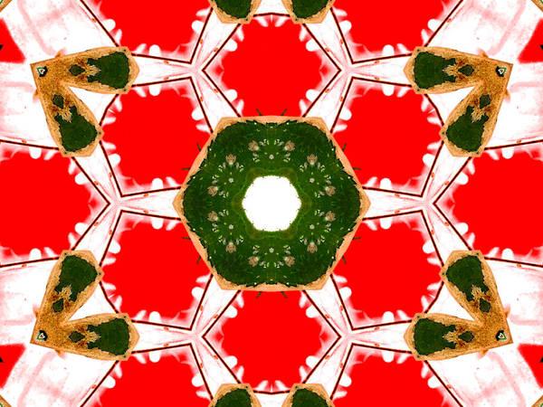 Digital Art - Kaleidoscope Abstract 12a by Artist Dot