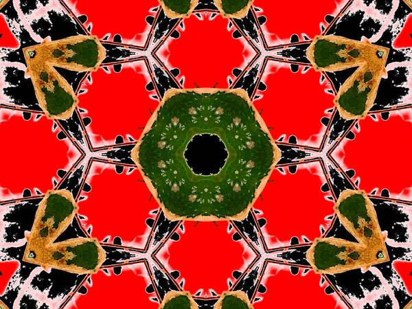 Digital Art - Kaleidoscope Abstract 12b by Artist Dot