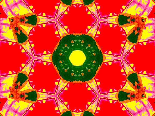 Digital Art - Kaleidoscope Abstract 12c by Artist Dot
