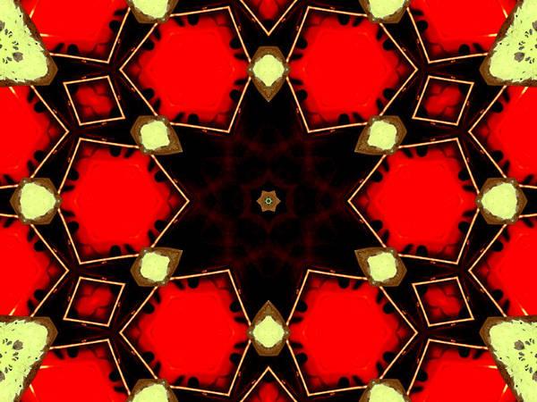 Digital Art - Kaleidoscope Abstract 13 by Artist Dot