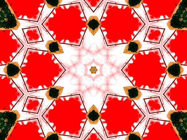 Digital Art - Kaleidoscope Abstract 13a by Artist Dot