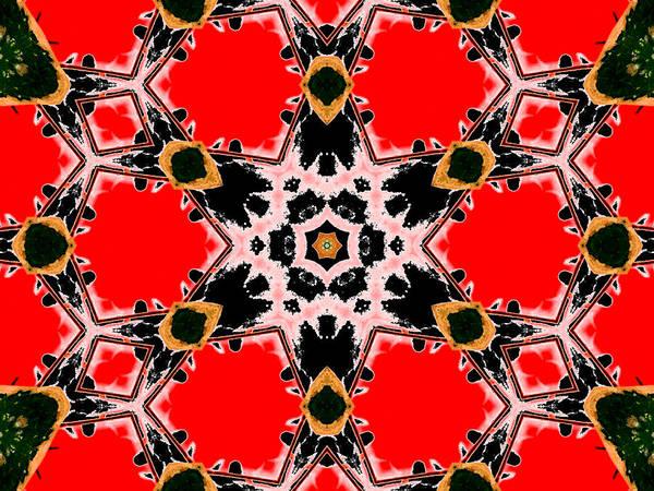 Digital Art - Kaleidoscope Abstract 13b by Artist Dot