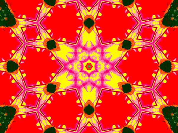 Digital Art - Kaleidoscope Abstract 13c by Artist Dot