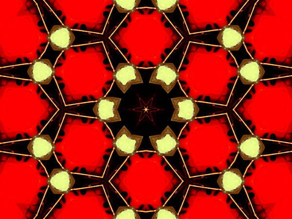 Digital Art - Kaleidoscope Abstract 14 by Artist Dot