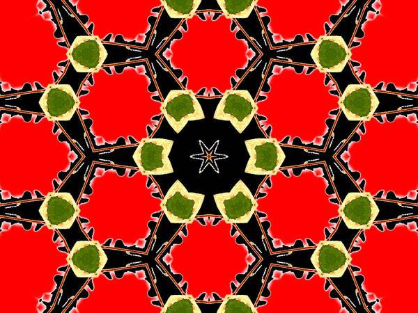 Digital Art - Kaleidoscope Abstract 14a by Artist Dot