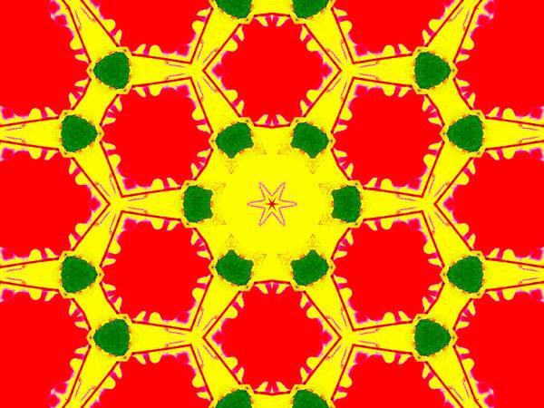 Digital Art - Kaleidoscope Abstract 14b by Artist Dot