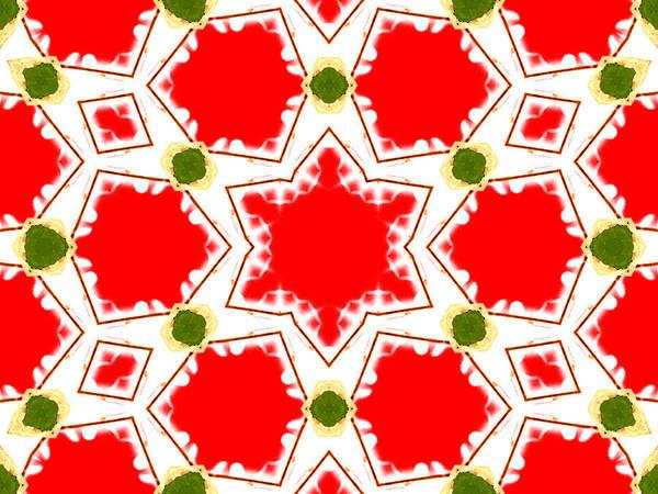 Digital Art - Kaleidoscope Abstract 15a by Artist Dot