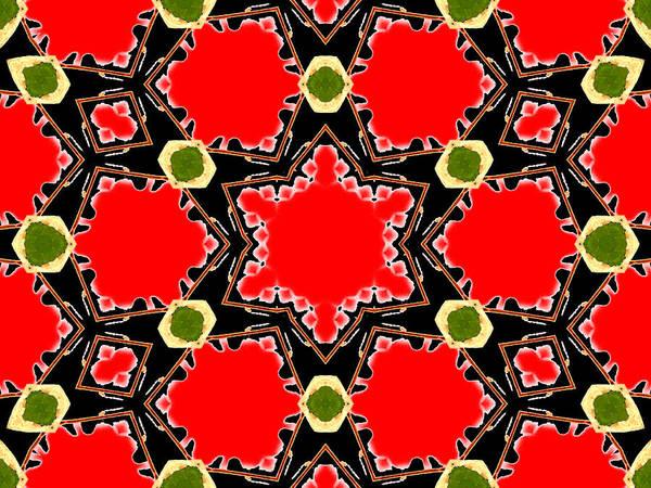 Digital Art - Kaleidoscope Abstract 15b by Artist Dot