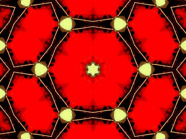 Digital Art - Kaleidoscope Abstract 16 by Artist Dot