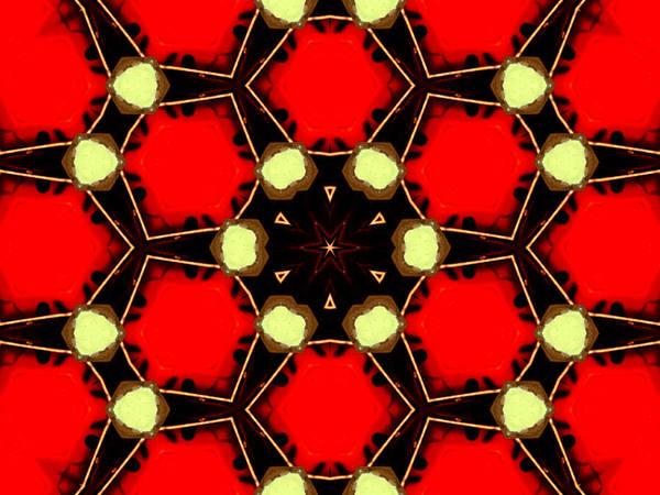 Digital Art - Kaleidoscope Abstract 17 by Artist Dot