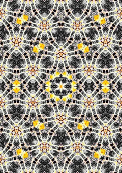 Digital Art - Kaleidoscope Abstract Pattern 8 by Artist Dot