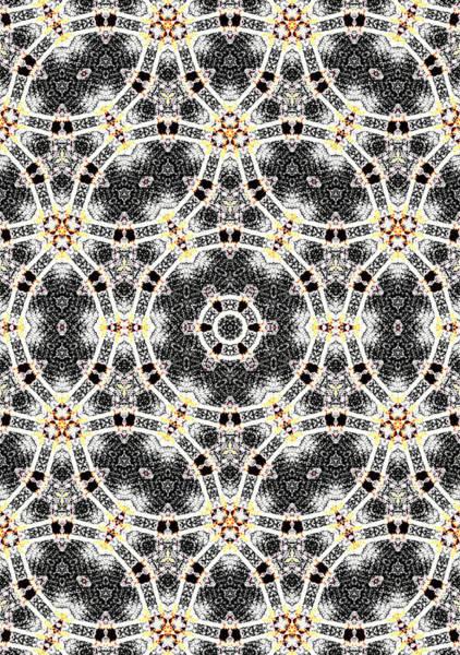 Digital Art - Kaleidoscope Abstract Pattern 9 by Artist Dot
