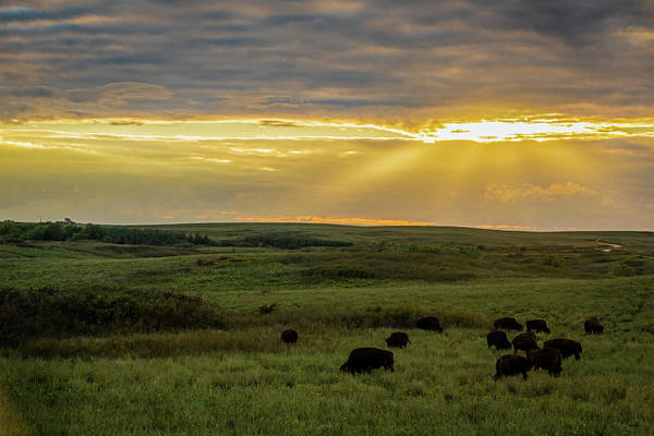 Photograph - Kansas Flint Hills Sunset by Jay Stockhaus