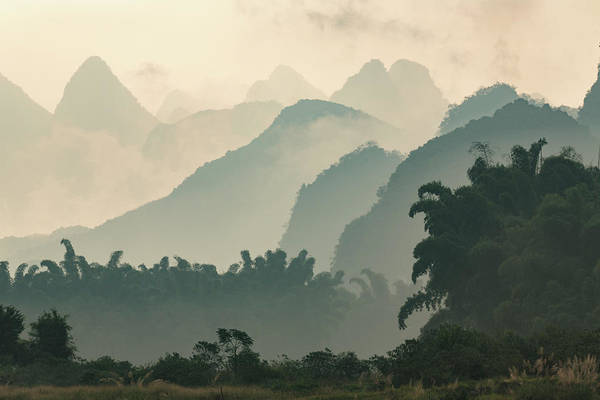 Wall Art - Photograph - Karst Formations And Bamboo Trees by Adam Jones