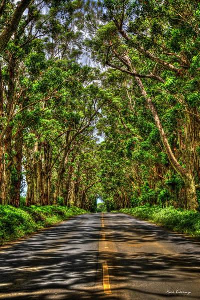 Photograph - Kauai Tree Tunnel South Shore Kauai Hawaii Art by Reid Callaway