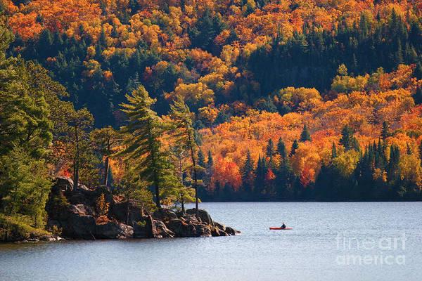 Algonquin Photograph - Kayaking In Algonquin Provincial Park by Aivoges