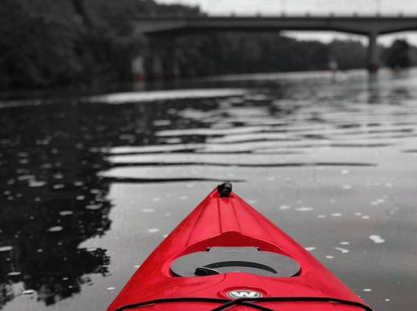 Photograph - Kayaking The Occoquan by Lora J Wilson