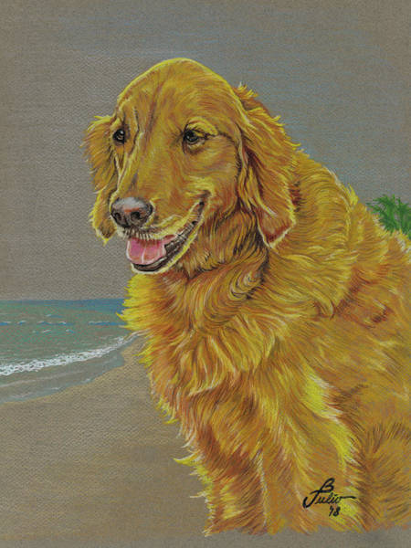 Golden Retriever Drawing - Kelly In Maui by Burt Julio