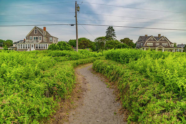 Kennebunkport Maine Photograph - Kennebunkport Coastal Pathway by Betsy Knapp