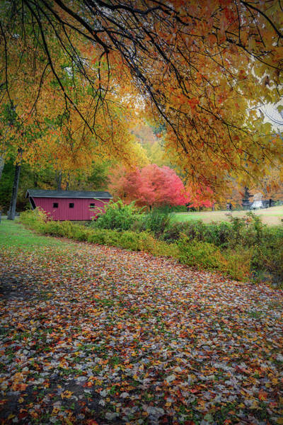 Photograph - Kent Falls Covered Bridge by Bill Wakeley