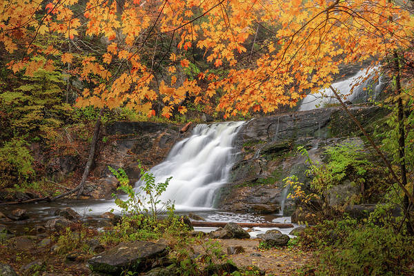 Photograph - Kent Falls Foliage 3 by Bill Wakeley