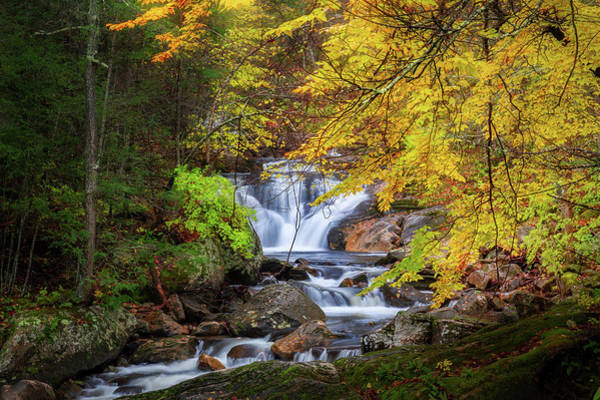 Photograph - Kent Falls Foliage by Bill Wakeley