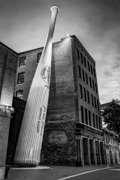 Photograph - Kentucky Louisville Slugger In Black And White by Gregory Ballos
