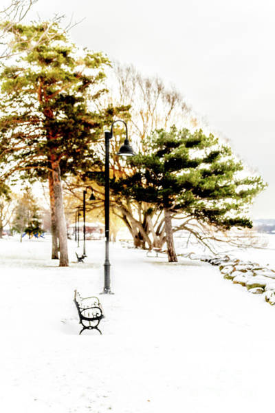 Wall Art - Photograph - Kershaw Park Winter by William Norton