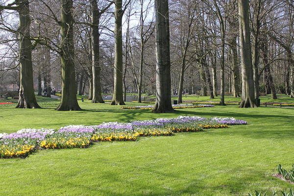 Photograph - Keukenhof 2732 by John Moyer