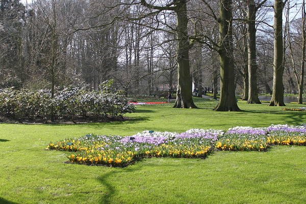 Photograph - Keukenhof 2733 by John Moyer