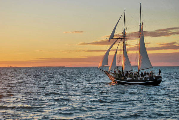 Photograph - Key West Bight by JAMART Photography