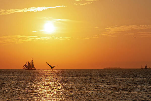 Photograph - Key West Sunset by Kay Brewer