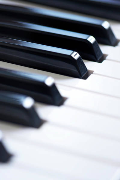 Grand Piano Photograph - Keyboard Close Up by Marsbars