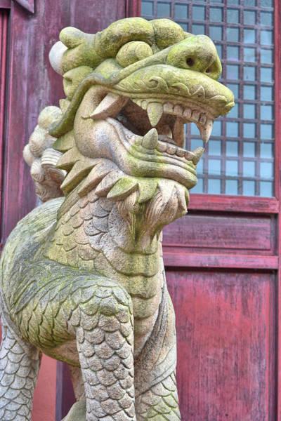 Photograph - Kicking Kaiju Butt by JAMART Photography