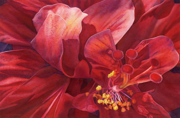 Hibiscus Painting - Kilauea's Kiss by Sandy Haight