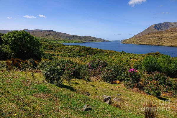 Wall Art - Photograph - Killary Fjord by Olivier Le Queinec