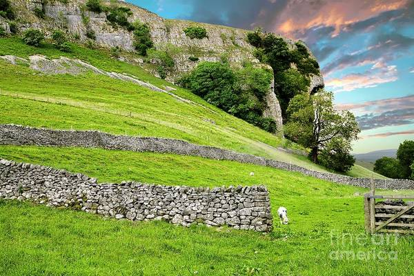 Photograph - Kilnsey Crag, Wharfdale, Yorkshire Dales by Martyn Arnold