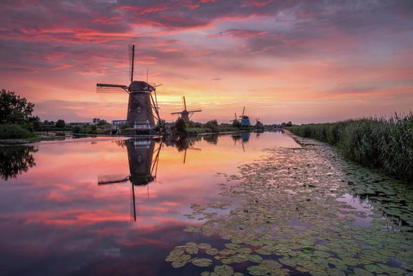 Photograph - Kinderdijk Sunset by Mario Visser