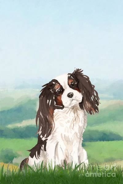 Pedigree Painting - King Charles Spaniel by John Edwards