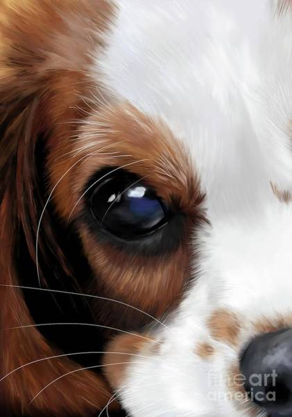 Welsh Springer Spaniel Painting - King Charles Spaniel by Monique Lap Art