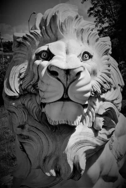 Photograph - King Of The Jungle In Stone by Rob Hans