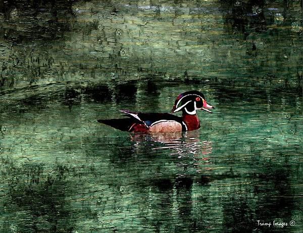 Digital Art - King Of The Pond by Wesley Nesbitt