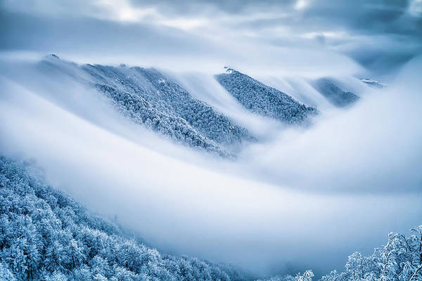 Wall Art - Photograph - Kingdom Of The Mists by Evgeni Dinev