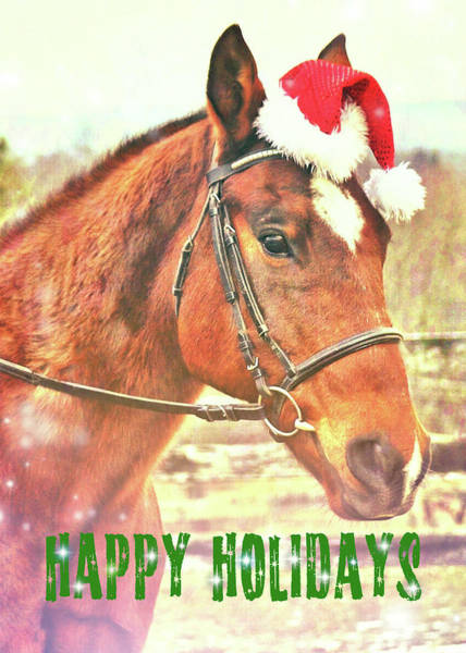 Photograph - Kirby's Happy Holiday Wish by JAMART Photography