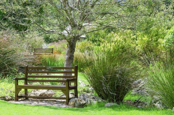 Photograph - Kirstenbosch National Botanical Garden by Rob Huntley