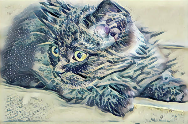 Digital Art - Kitten Great Eyes by Don Northup